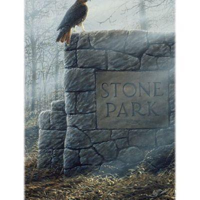 stillness-and-stone