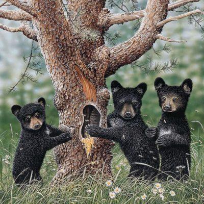 tree-bears