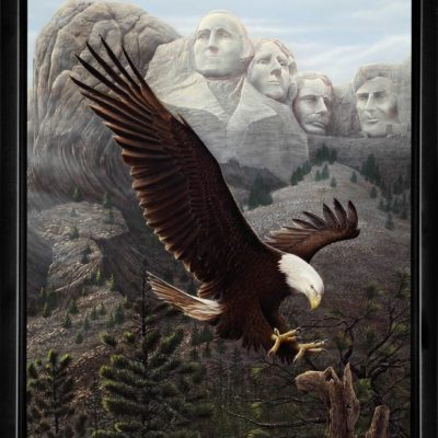 wings-of-freedom-framed